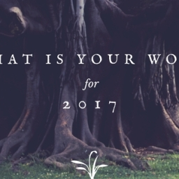 What is your word for 2017?